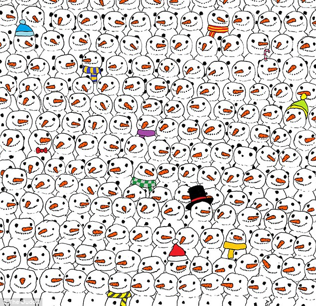 panda caché
