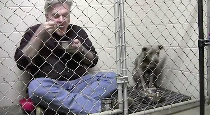 Il s'enferme dans la cage avec un pitbull affaibli : Son geste lui a sauvé la vie