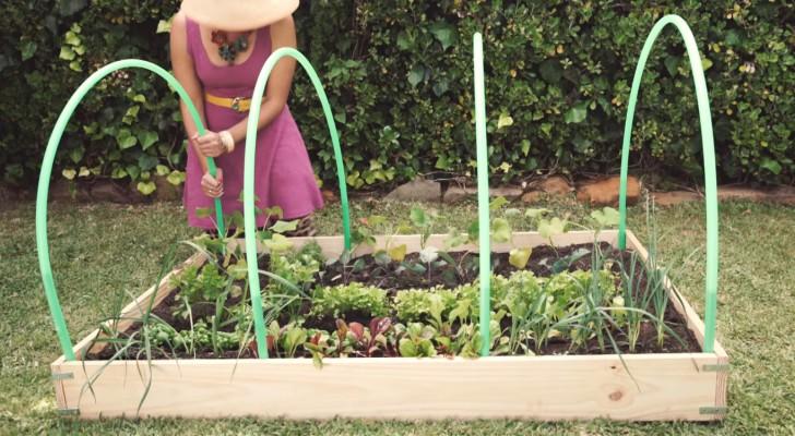 elle place 4 anneaux sur son petit jardin son id e est brillante c 39 est fait maison. Black Bedroom Furniture Sets. Home Design Ideas