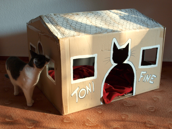 30 idées pour fabriquer un joli lit pour votre chat avec de vieux objets