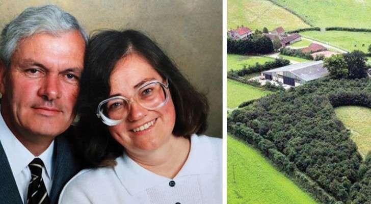 Après la mort de l'épouse, il plante 6000 arbres: 20 ans plus tard, voici ce que vous pouvez voir d'en haut